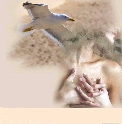 Resultado de imagen de gaviota y mujer en el mar